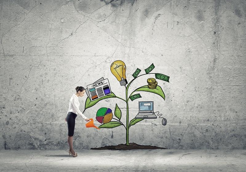 Optimiser-vos-revenus